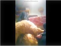 Sexoni Dildog