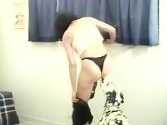 Horse blowjob compilation