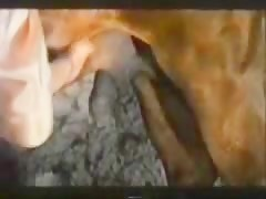 Bilara raises her legs and sucks - Bestiality videos - ZooSexsite.com